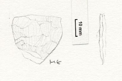 NLM4536: Lithic. 4536