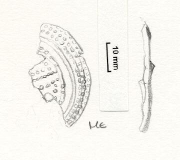 NLM6185: Brooch. 6185