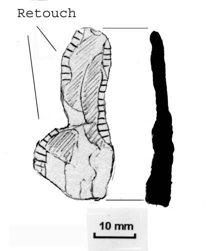 NLM-F9BBB0: Mesolithic to Neolithic Retouched Flake