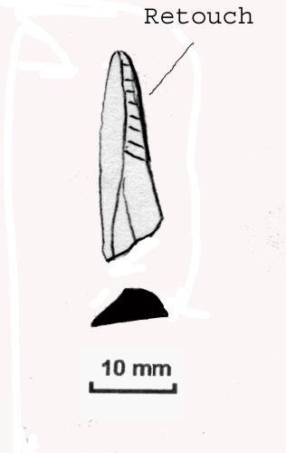 NLM-116CF1: Mesolithic Microlith