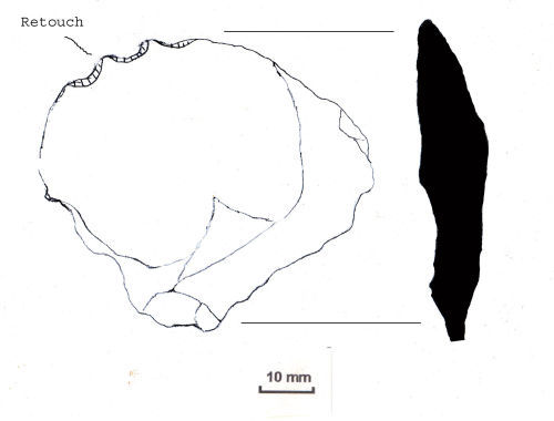 NLM-E5BF12: Mesolithic to Neolithic Denticulate
