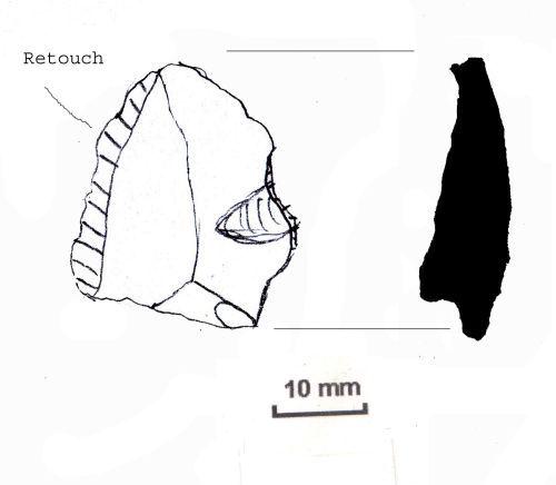 NLM-E5D3F2: Neolithic to Early Bronze Age Scraper
