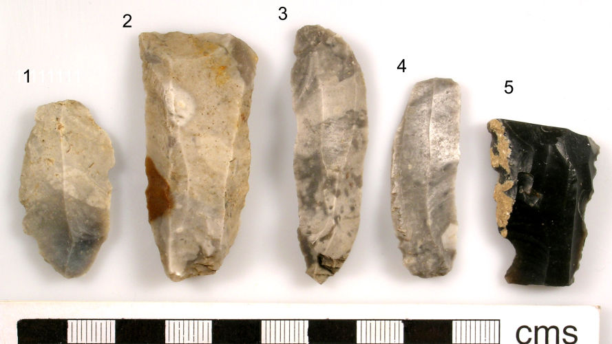 SUSS-7A1A00: Mesolithic: Lithic implement