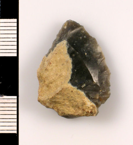 SUSS-A54CD5: Neolithic : Lithic implement