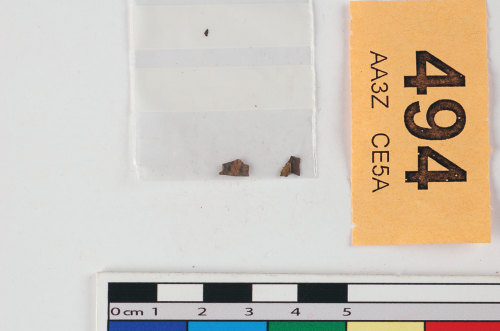 STAFFS-94E605: Possible silver gilt fragments
