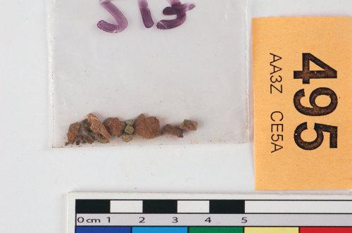 STAFFS-950768: Copper alloy fragments