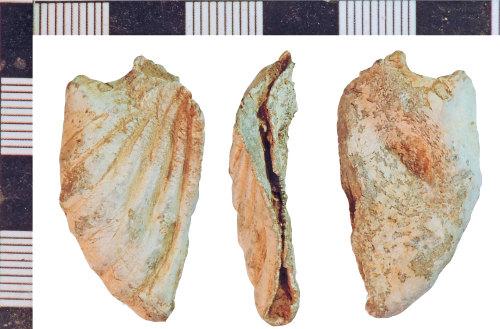 NLM-8DF096: Medieval Ampulla fragment