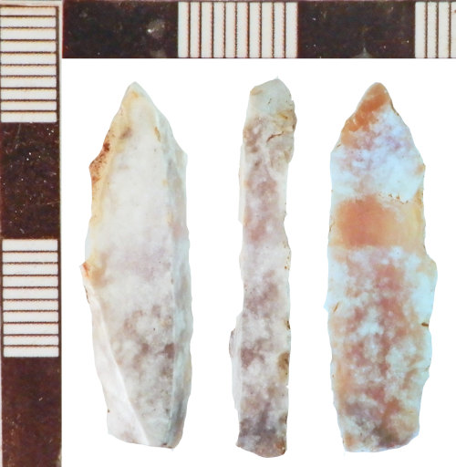 A resized image of Mesolithic Debitage
