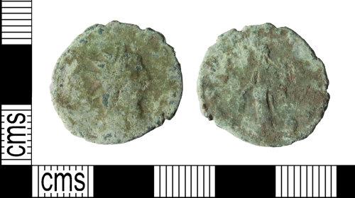 WILT-310731: radiate of Carausi