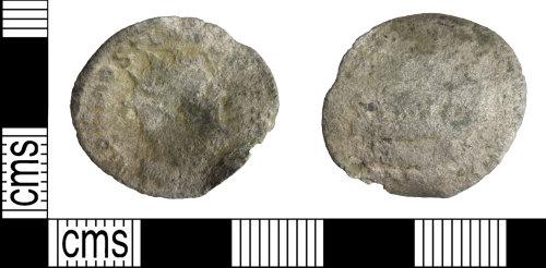 WILT-5393B2: Postumus silver radiate