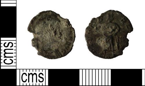 WILT-B058AA: Theodora nummus.