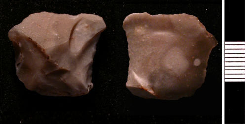HESH-475F36: Small flint flake of probable Neolithic date (3500 - 2100 BC).