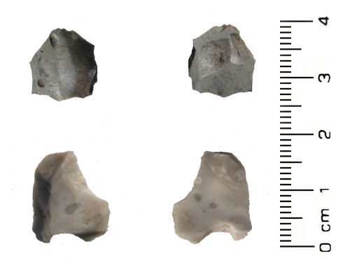 A resized image of Neolithic: Tertiary flint debitage