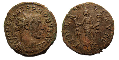 WMID-225242: Probus coin from Barlaston I