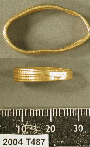 Squashed Ring