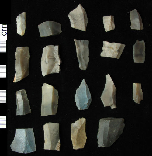 HAMP-32CCB5: Nineteen Mesolithic 'microliths' (dorsal view)
