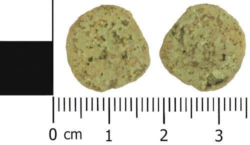 LVPL-405C36: romannummusunidentified