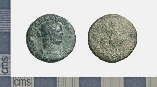 A resized image of COIN