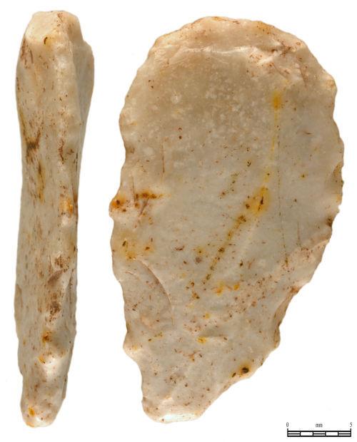 PUBLIC-F81191: Neolithic Flake