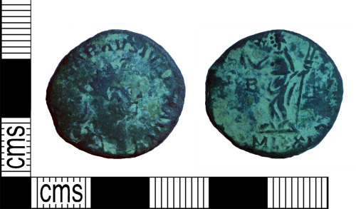 A resized image of Radiate of Carausius