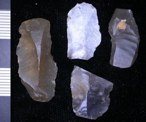 LEIC-22E9D6: Mesolithic flint blade like flakes